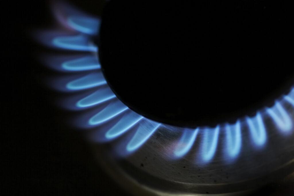 Gas hob burner - healthy blue flame,