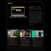 FLIR Screen-EST Temperature-Screening Desktop Software - Datasheet